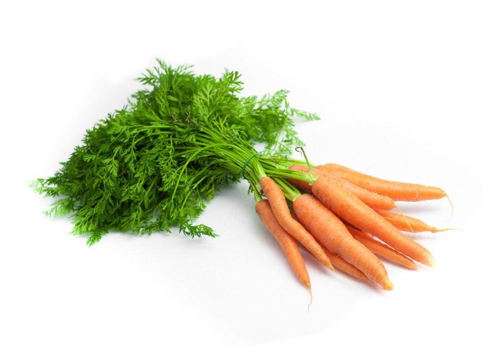 fane carottes